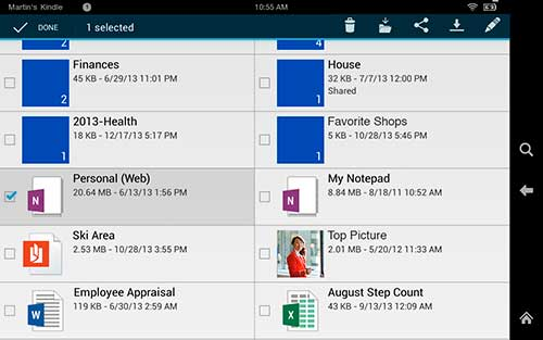 Microsoft OneDrive, Amazon AppStore, Kindle